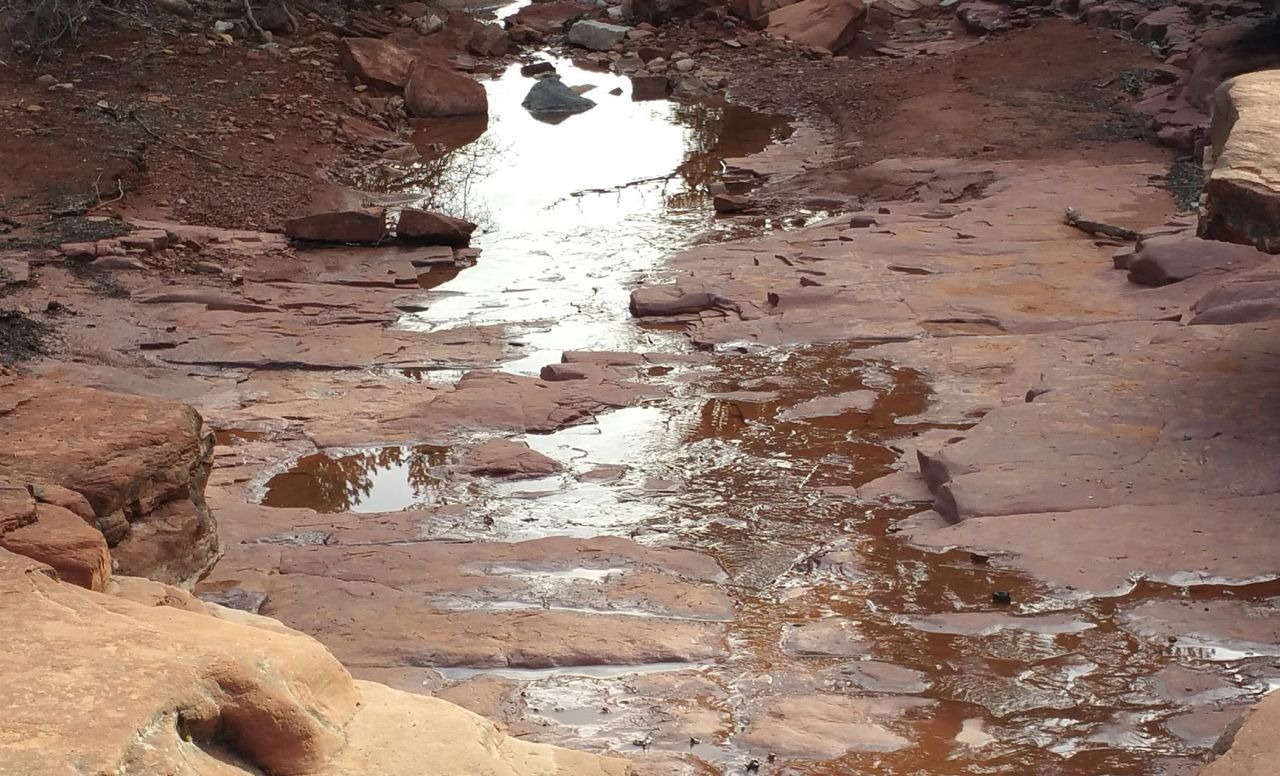 Outdoors Creekside Trail Water Nature Arizona Sedona Beauty In Nature Creek Bed