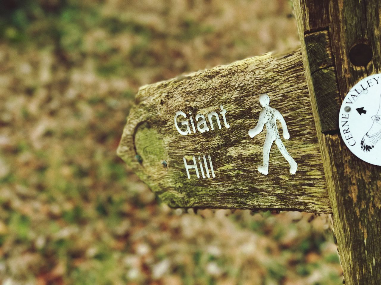 Cerne Giant Outdoors Signs nature Communication Text Focus On Foreground No People Close-up Day