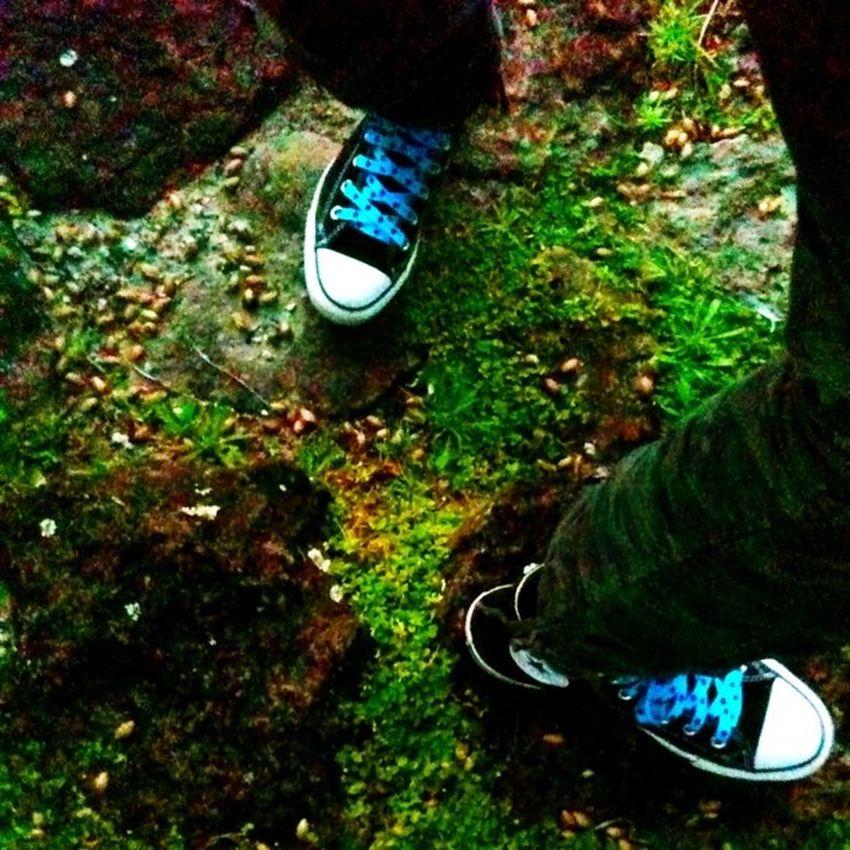 Chucks Converse Skateshoes  MossyRocks Stairs Black Blue Green