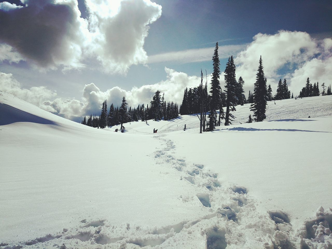 snow, winter, cold temperature, sky, cloud - sky, nature, weather, beauty in nature, tranquility, day, tranquil scene, scenics, frozen, outdoors, no people, tree, landscape, mountain