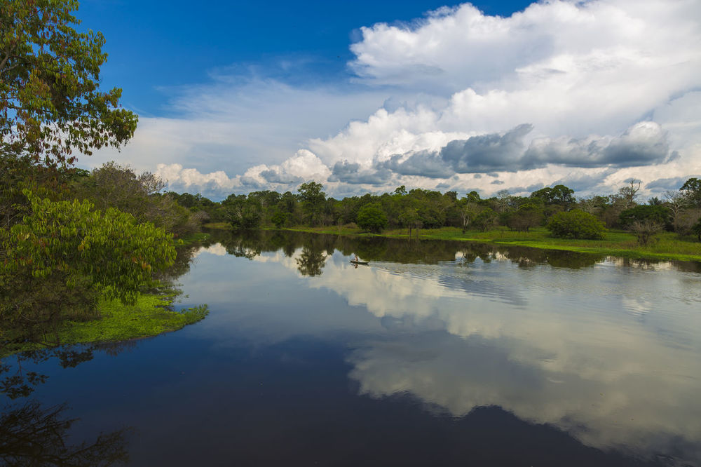 Amazon Rainforest Hello World Amazon Jungle Nature's Diversities Canoa Igarapé