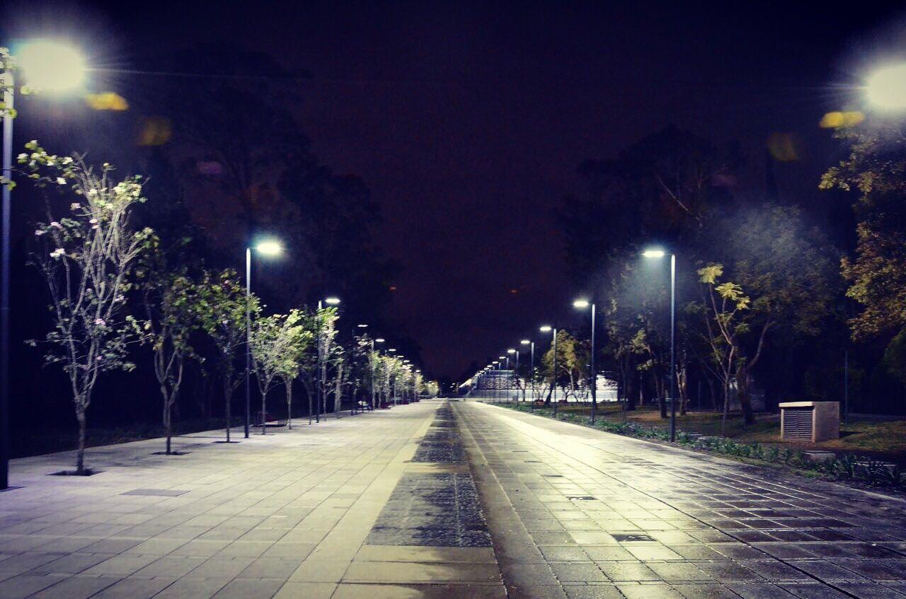 illuminated, night, street light, lighting equipment, tree, outdoors, no people, the way forward, sky, nature