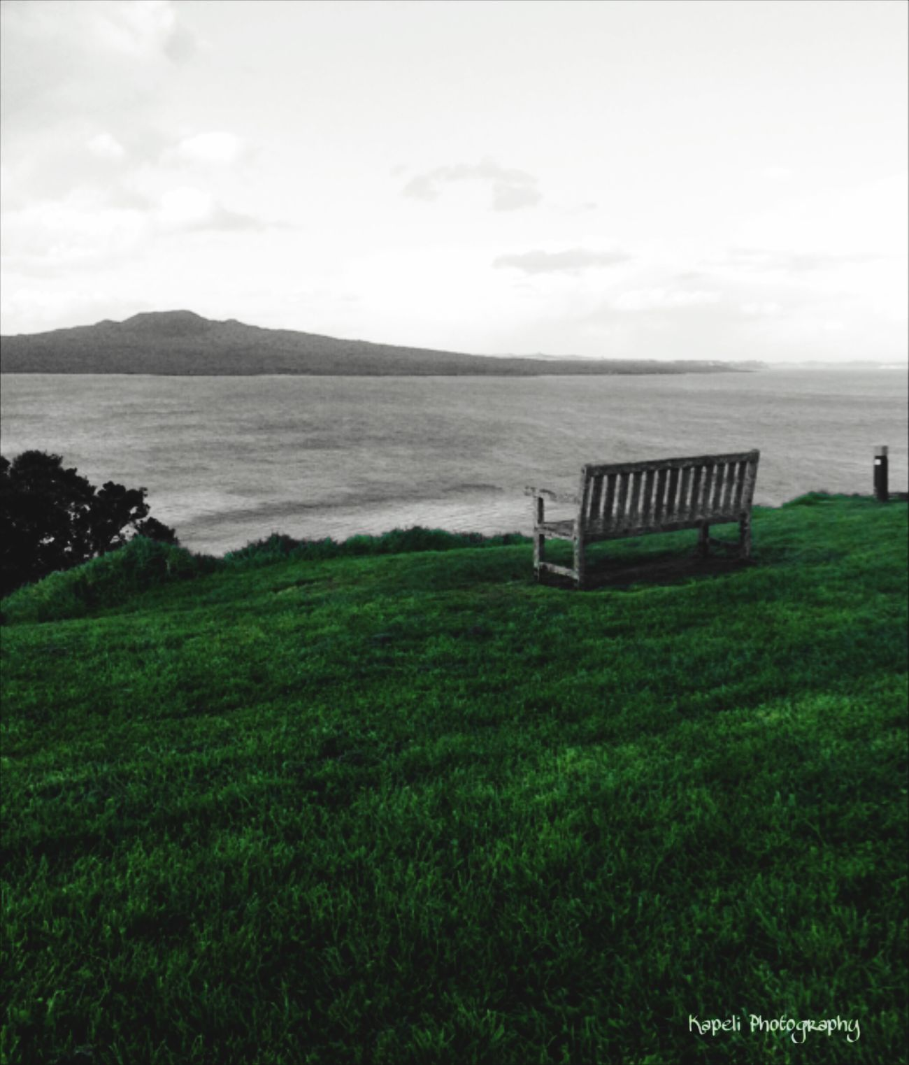 Rangitoto Rangitoto Island Rangitoto Sleeping Volcano Enjoying The View Amazing View Seat Water EyeEm Nature Lover IPhoneography Coloursplash