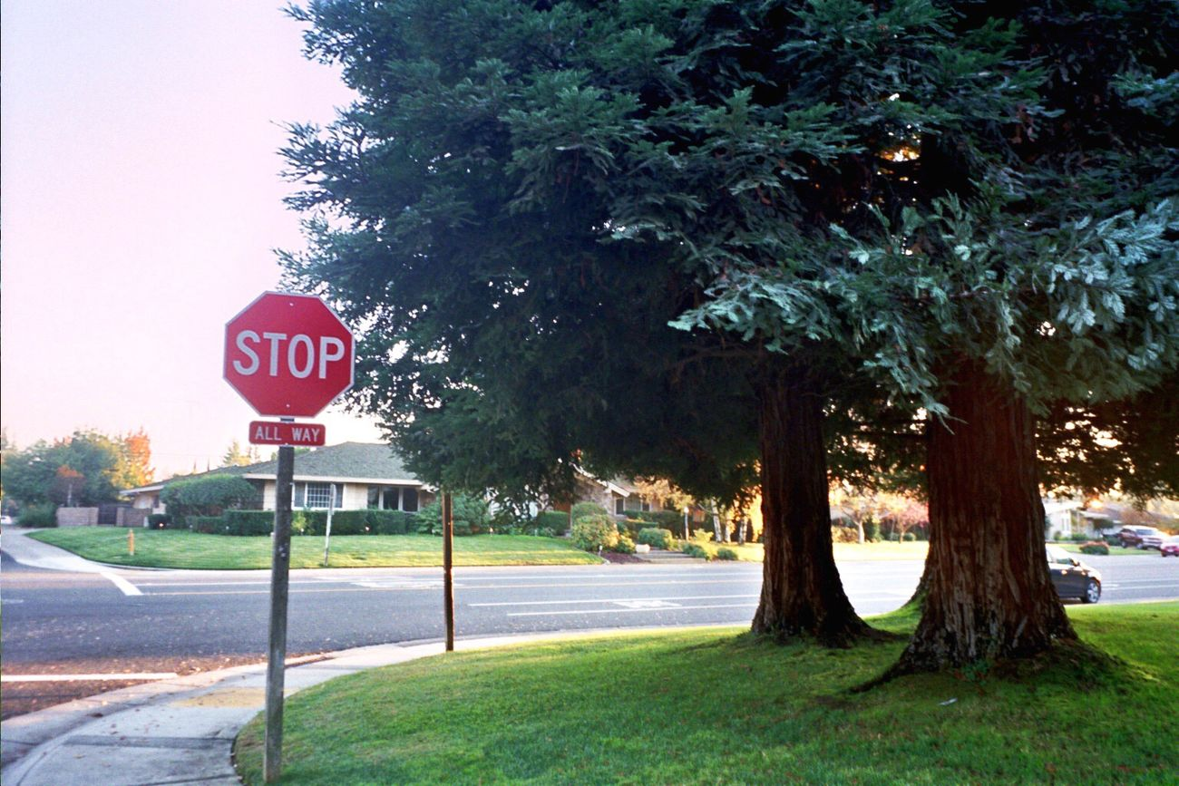 Outdoors Road Sign Tree Stop Sign No People Road Neighborhood Sacramento Film Klasse W Koduckgirl