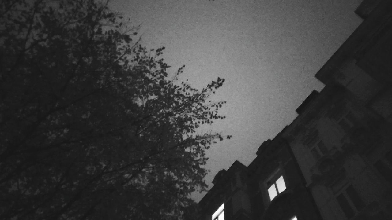 Apartment Lights. · Hamburg Germany 040 Hh Rothenbaum Architecture Built Structure Low Angle View Building Exterior Sky Tree No People Outdoors Dusk City Lights Night Lights Blackandwhite Black And White Monochrome