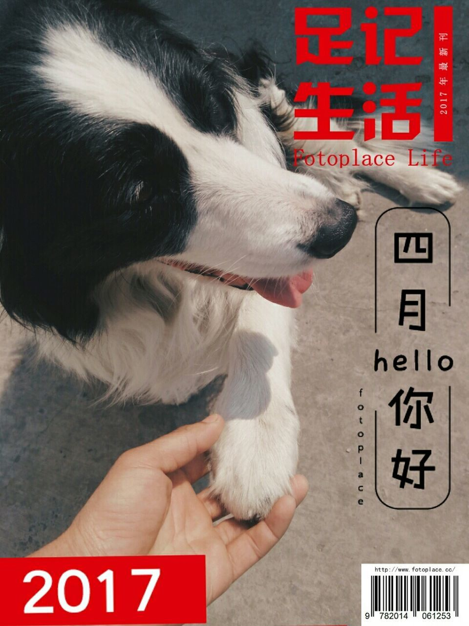 text, western script, real people, one person, pets, one animal, dog, animal themes, communication, domestic animals, holding, close-up, day, outdoors, human hand, mammal, people