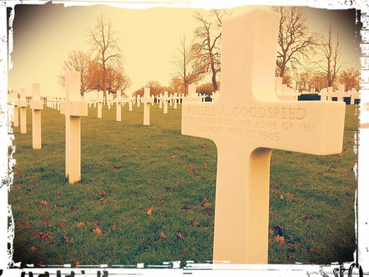 tombstone, cemetery, memorial, tree, grass, outdoors, day, cross, gravestone, no people, graveyard, tranquility, grave, nature