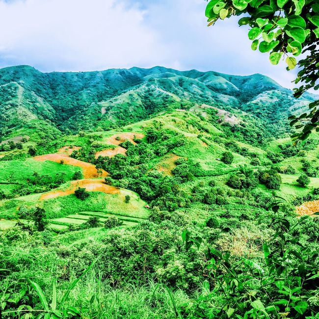 Scenery Eyeem Philippines EyeEm Nature Lover TravelPhilippines Tranquil Scene Tree Landscape Scenics Tranquility Green Color Beauty In Nature Lush Foliage Growth Nature Non-urban Scene Mountain Solitude Green Sky Plant Idyllic Countryside Remote Greenery