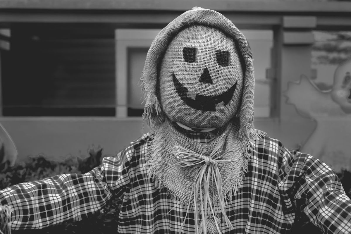 our version of scare crow decor for halloween :D Halloween Halloween EyeEm Halloween_Collection Trick Or Treat Black And White Close-up Day Decoration Focus On Foreground Front View Lifestyles Men One Person Scarecrow Scary Strawman Rethink Things Black And White Friday AI Now