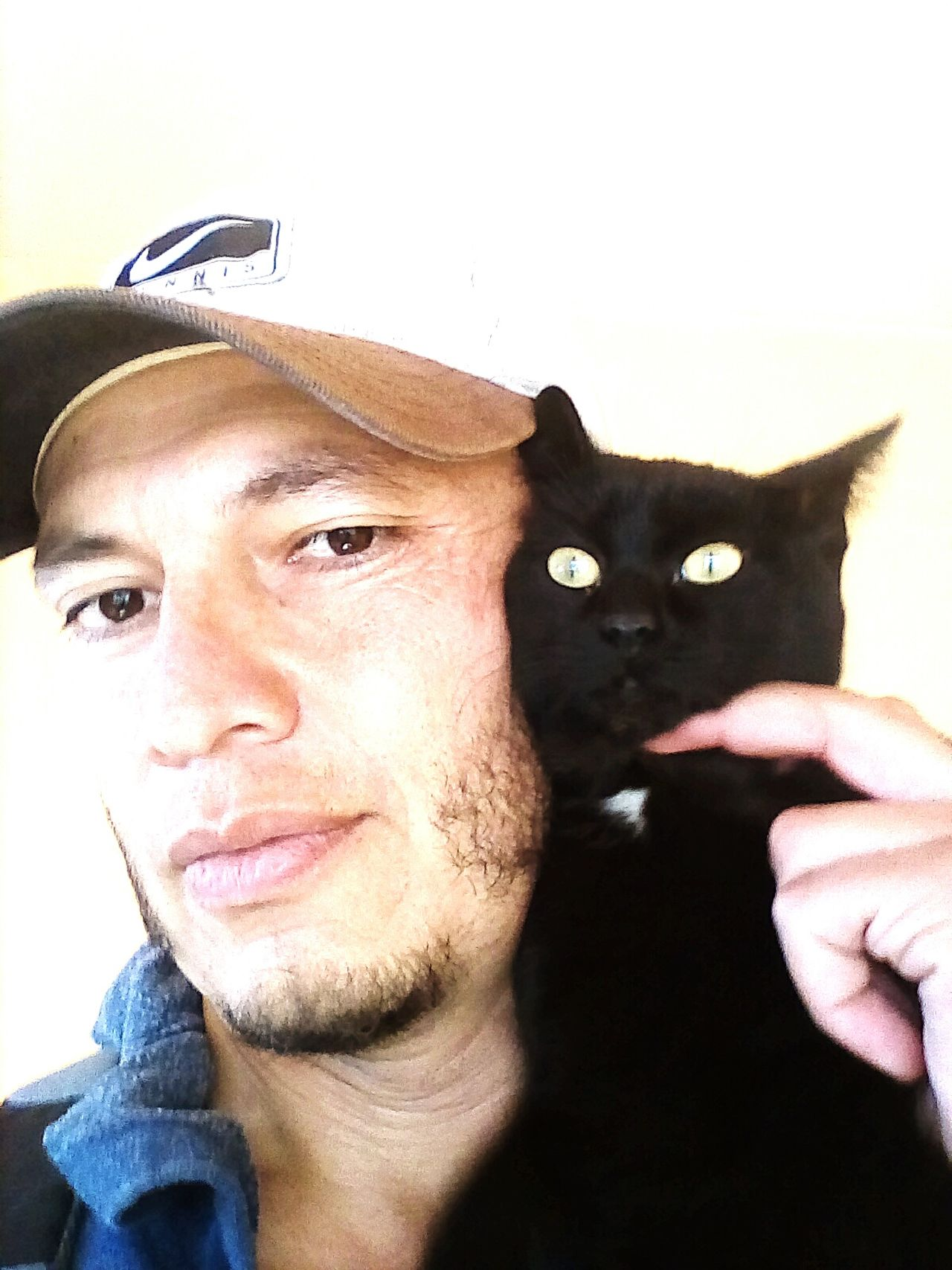 New family member: Senshi... Adults Only One Man Only One Young Man Only One Person Headshot Adult People Close-up Day Young Adult Portrait Only Men Real People Indoors  Feline Mammal Yellow Eyes Whisker Animal Eye Animal Themes Pets Indoors  Cat Black Cat Kitty...