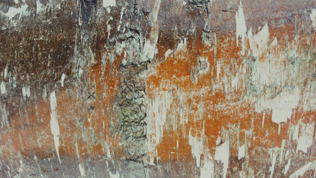 weathered, rough, paint, rusty, textured, built structure, close-up, backgrounds, architecture, no people, indoors, day