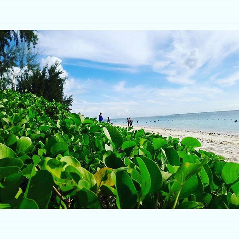 -Silence is the most powerful scream. Instapic Instamood Beach Tb Mauritius Igersmauritius