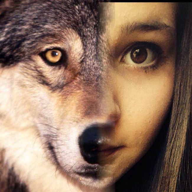 Wolf Love Me Check This Out
