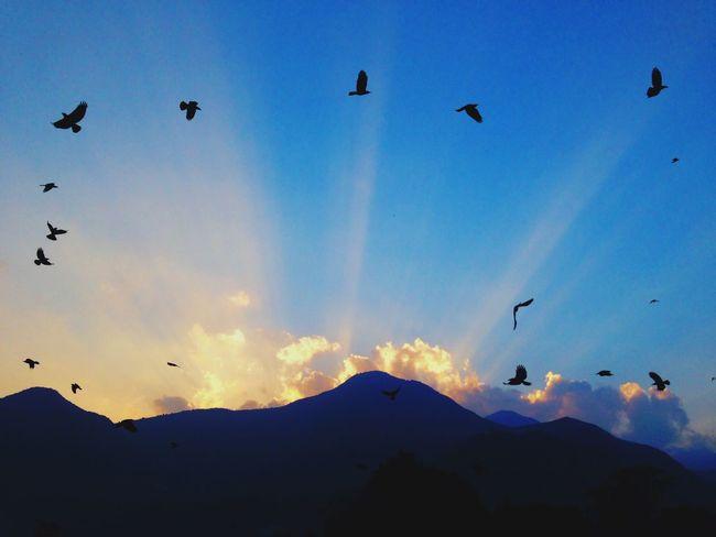 Sunset Day Break Light And Shadow November Sun Iphonography Birds Nepal Champadevi Danda Blue Wave