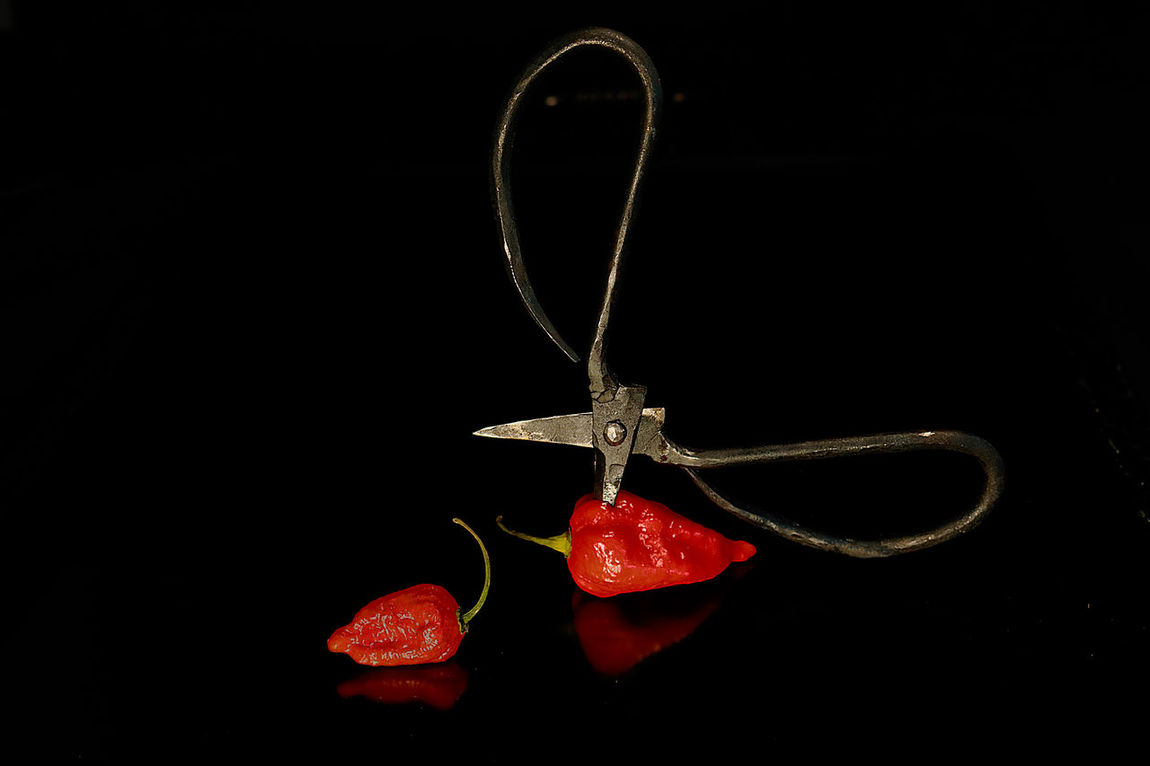 Black Background Chili  Chili Pepper Creative Food Cute Food Food Fotography Hot Red Color Scissors Still Life Styled Food Vegatable
