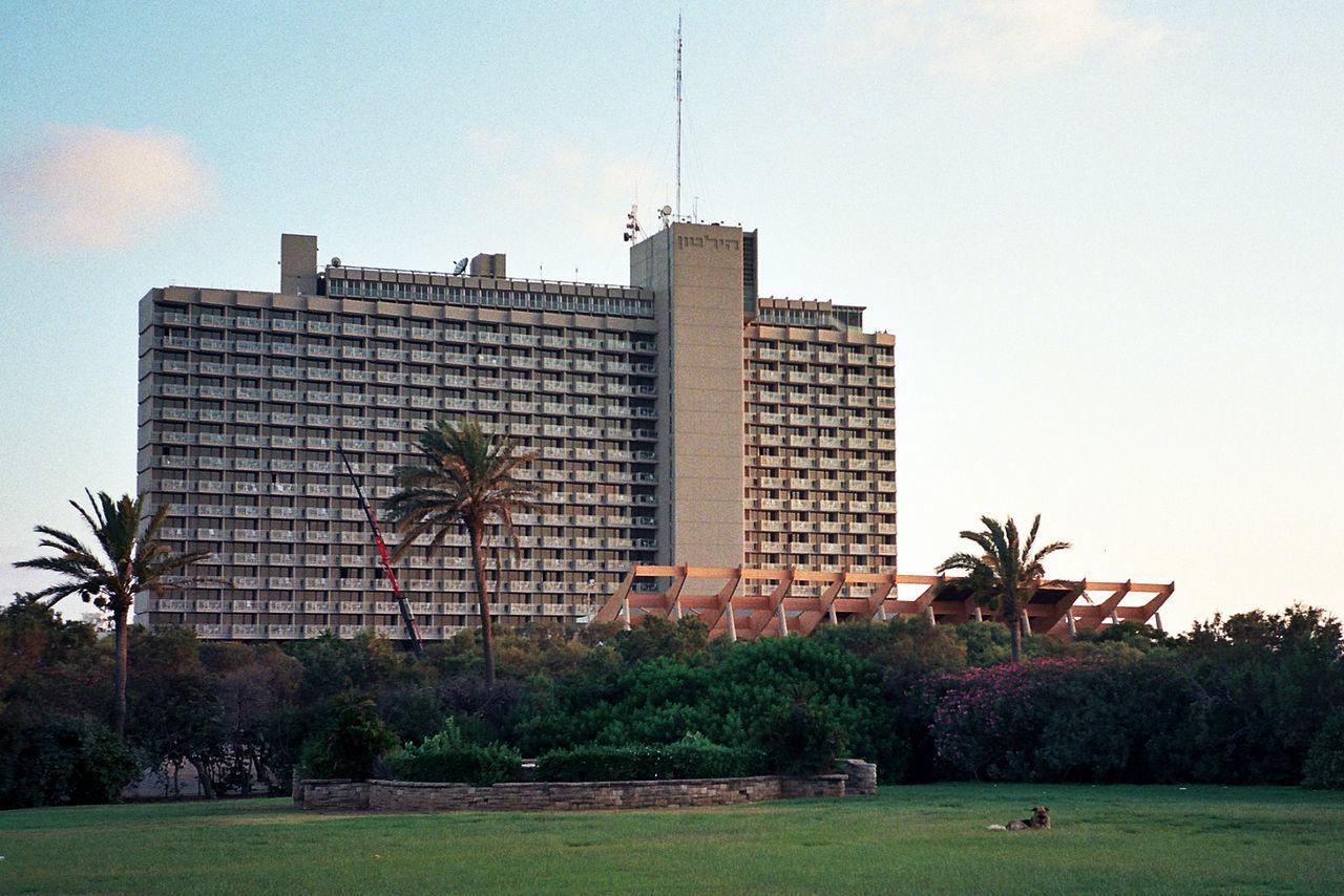 Distant Dog Dog Grass Lawn Tel Aviv Hilton