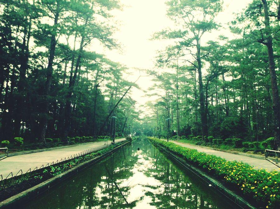 wright park Eyeem Philippines Love Baguiocity Wrightpark