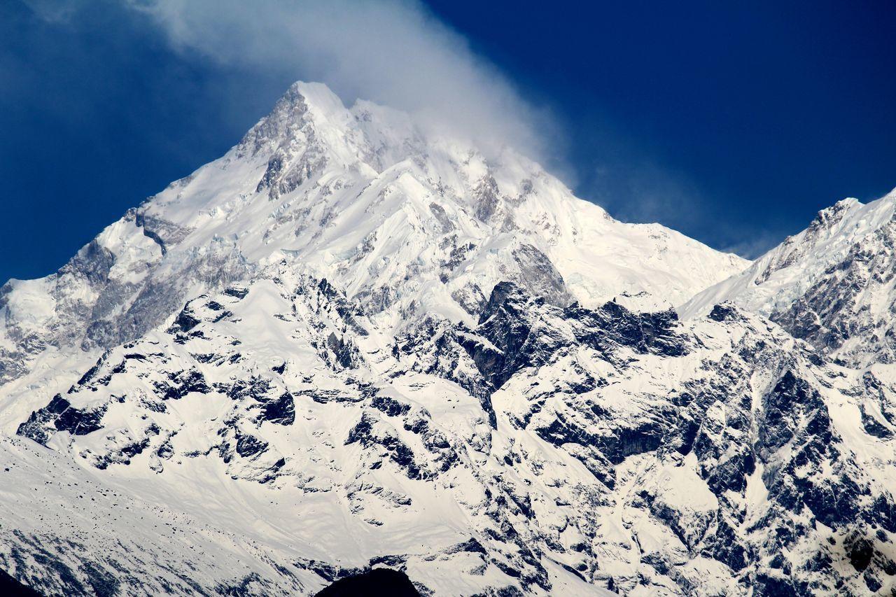 MtKanchenjunga Sikkim Flowers, Nature And Beauty Nature's Diversities Himalayanwonders Singhik Adventure