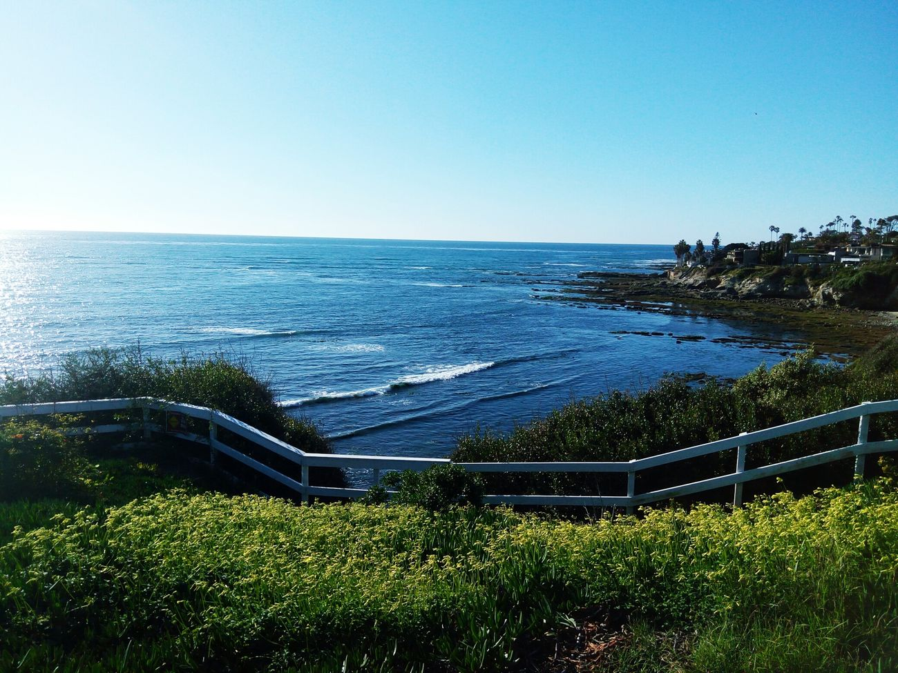 Clear Sky Sea Sport Nature Outdoors Scenics Beauty In Nature Sky Day Tranquility Water Horizon Over Water Tranquil Scene No People Tree Soccer Field Stadium Getty Images Pixelgirl Clear Sky Ocean, Water, Beach, Birdrock TRENDING  TRENDING  Sea Lion Grass