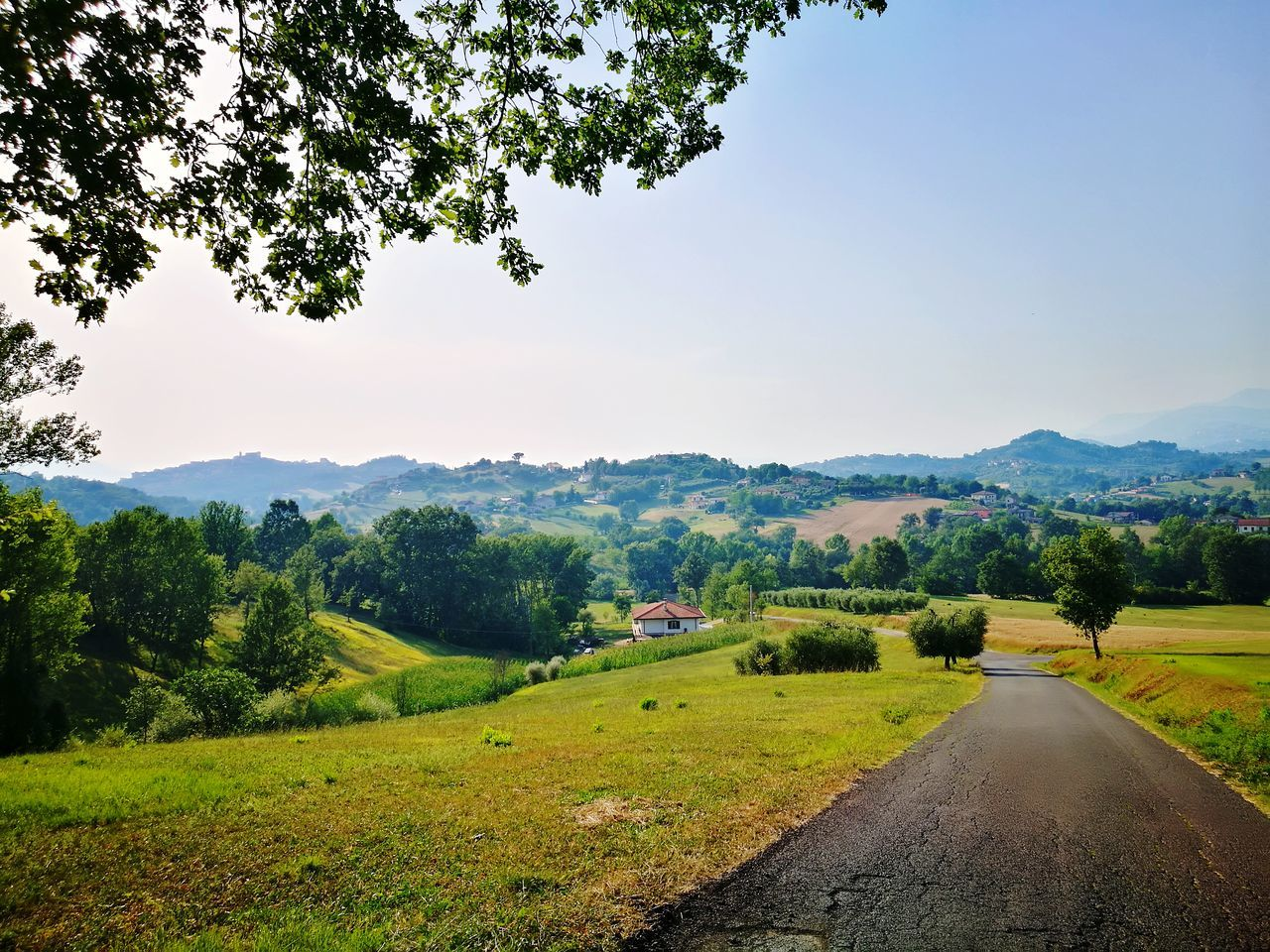 Tree Landscape Mountain Outdoors Scenics Mountain Range Nature No People Sky Beauty In Nature Rural Scene Road Forest Day Freshness Countryside Italycountryside Nature Beautiful Day Beautiful Place Travel Italy🇮🇹 Wonderful Place To Visit Walkingalone Walking Around