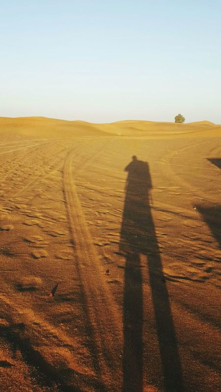 Desert Shadow Nature Outdoors Landscape Sand Sand Dune Arid Climate Beauty In Nature Tire Track Day Real People Sky Scenics Adventure People Adult Adults Only Motorsport