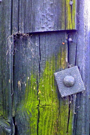 Bolt, Cracks Green, Nails Black, Close-up Fence No People Outdoors Textured  Weathered Wood - Material