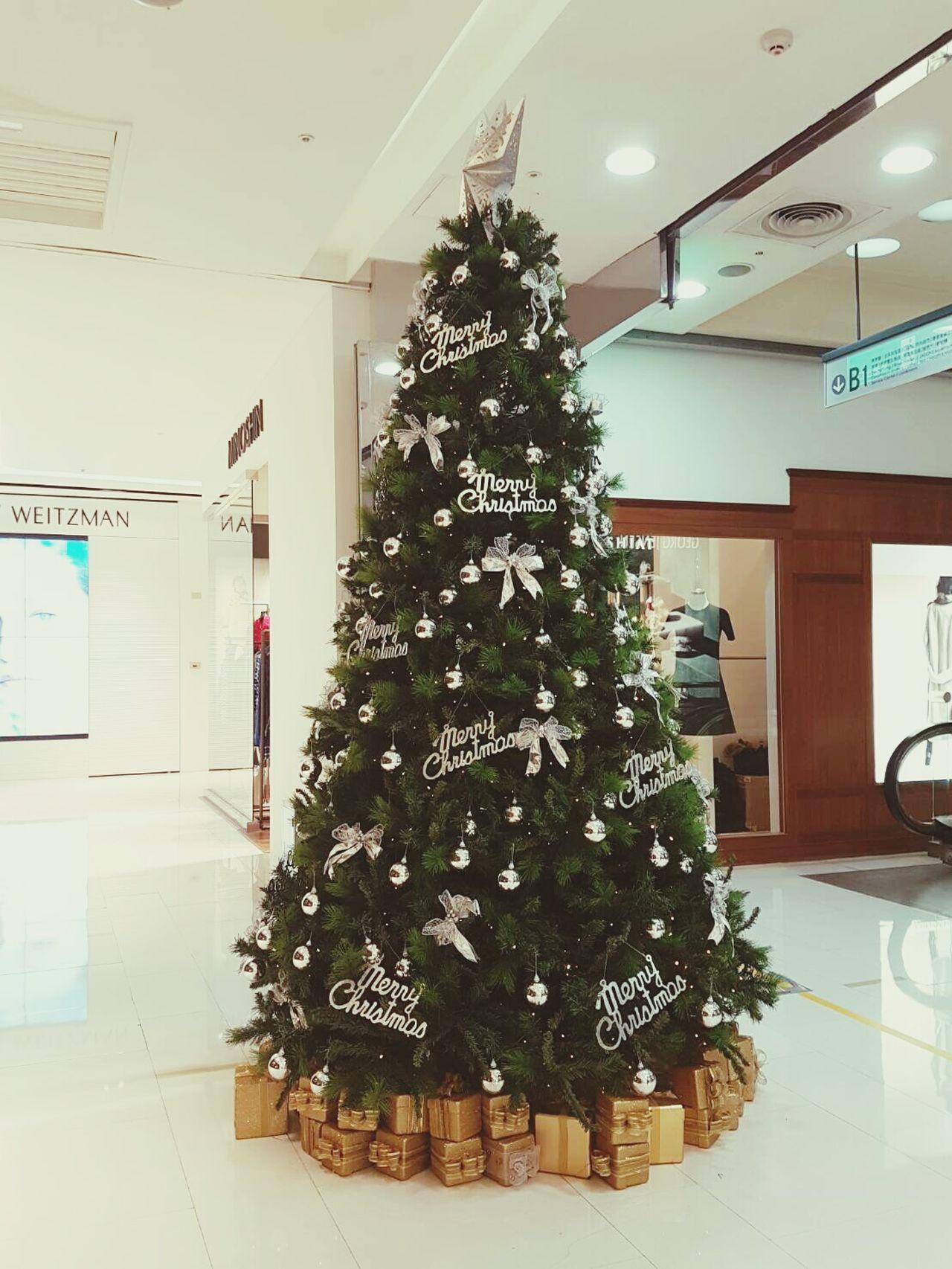 簡單就是美 Tree🎄🎄🎄 Christmas Tree Christmas Christmas Decoration Illuminated Indoors  Christmas Lights Living Room Tradition Green Color Celebration No People Christmas Ornament Day