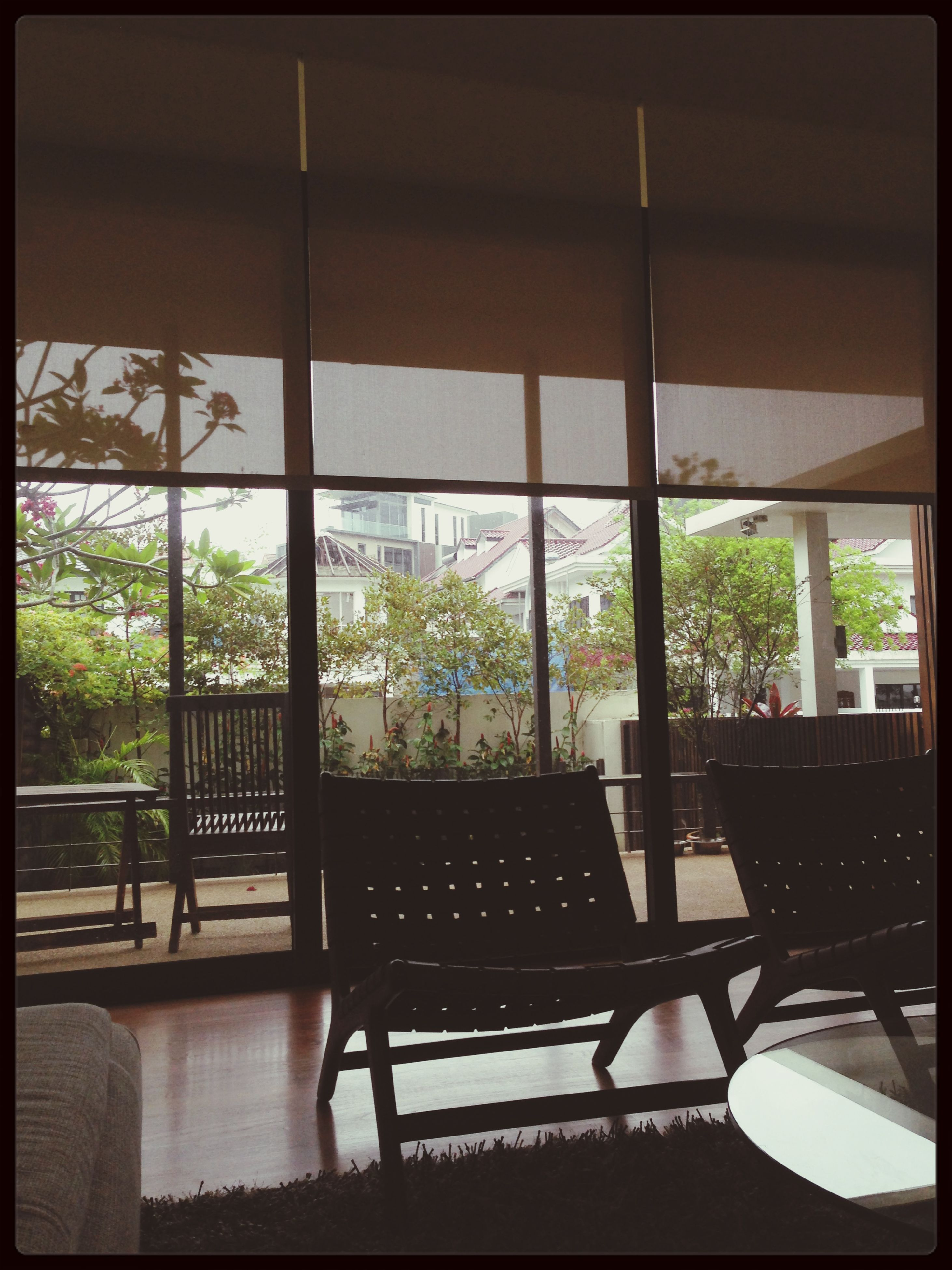 indoors, table, chair, window, potted plant, glass - material, home interior, architecture, built structure, restaurant, transfer print, absence, sunlight, vase, transparent, house, empty, auto post production filter, day, tree