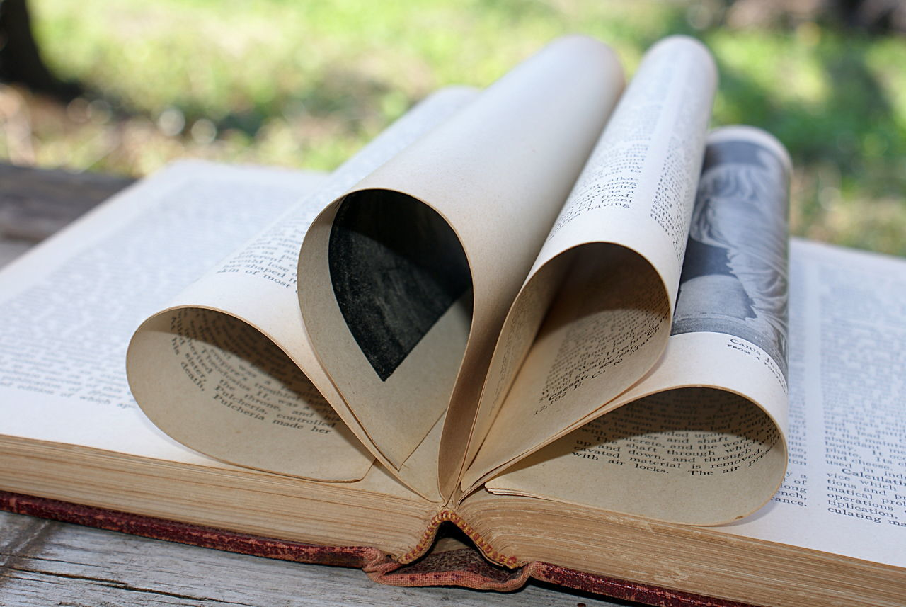 An old vintage encyclopedia makes a design of loops, or flower petal shapes, outside, with a bokeh background of greenery and sunshine. Book Close-up Day Education Encyclopedia Focus On Foreground Knowledge Learning Literary Literature No People Outdoors Page Paper Still Life Text Vintage Writing
