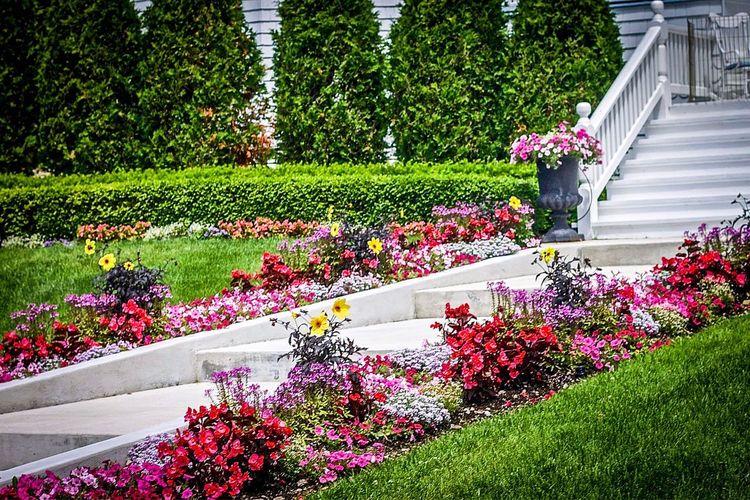 Flowers, Landscape, Stairs, Grass Mackinac Island Michigan Landscape Gardening