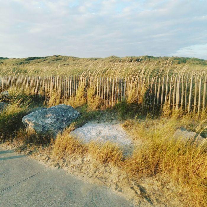 Northern France Plage Berck Plage Bercksurmer Dunes Baie D'authie Cotedopale Opale'coast France Finesand