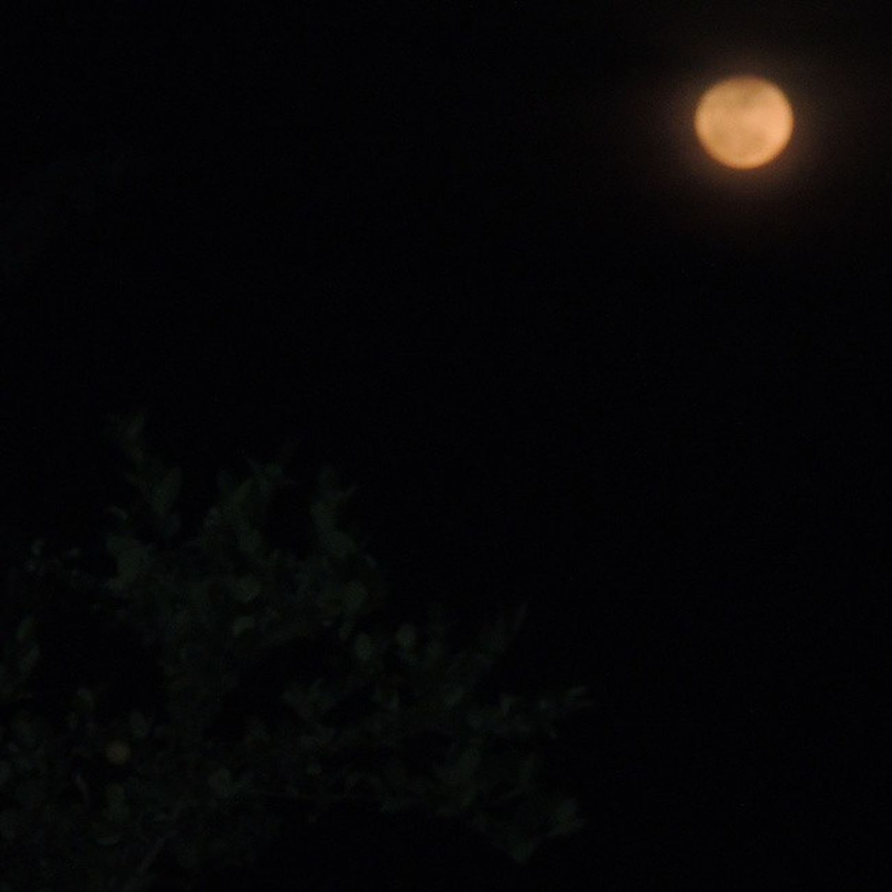 Beautiful Moon♡♥