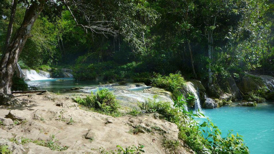 DMC-LX7 Cambugahay Falls Siquijor Paradise Jungle River Philippines