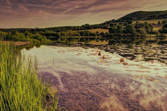 EyeEmBestShots-Reflections EyeEm Best Shots - Landscape Landscape_Collection Landscapes