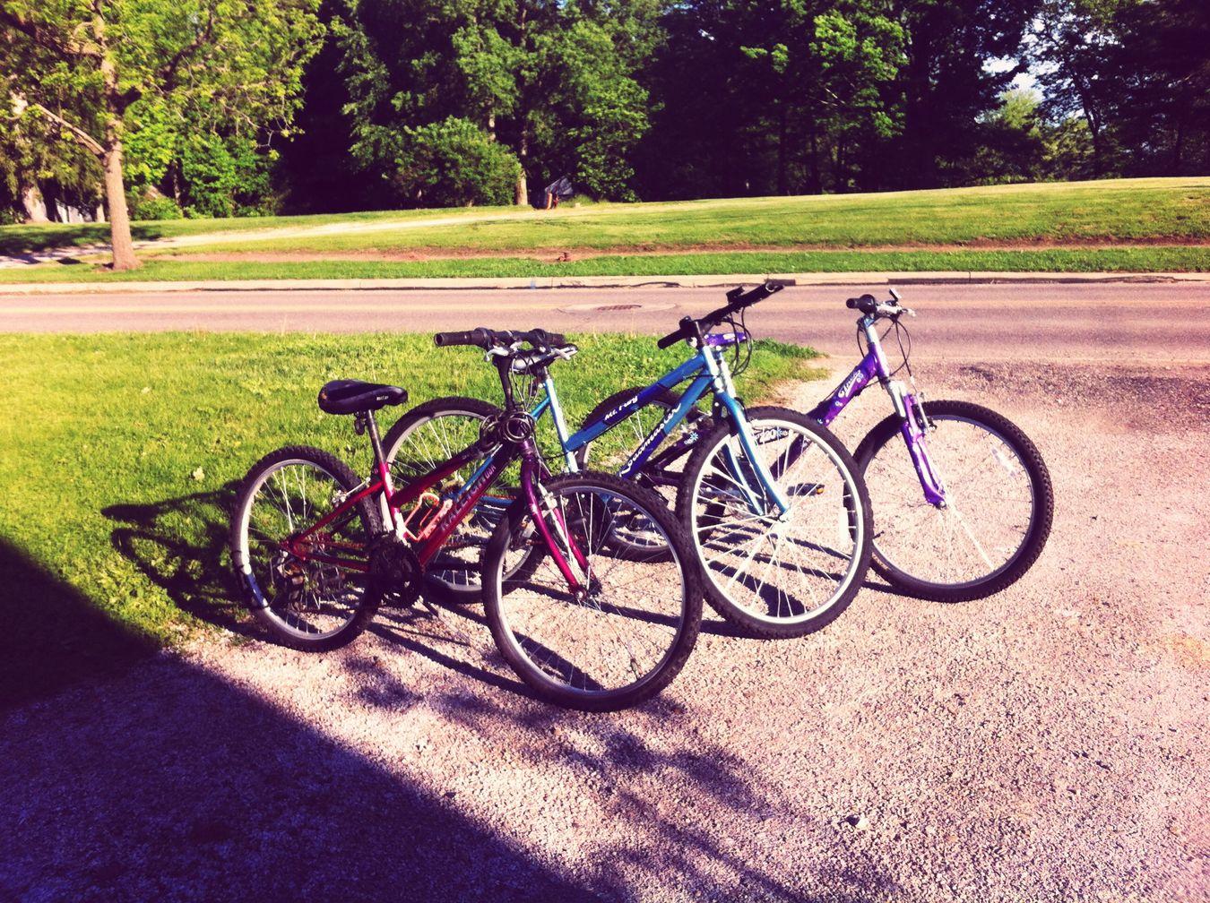 BikerGang2015 Posí