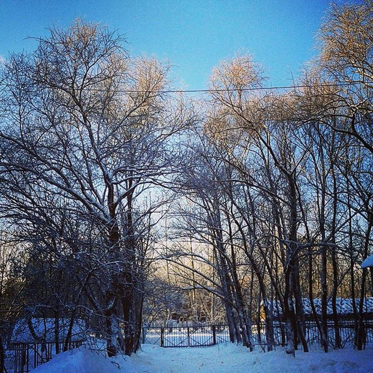 омск сибирь январь зима новыйгод рождество синяявечность Omsk Siberia January Winter NewYear Christmas