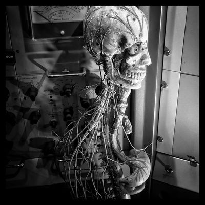 Standing alone. Blackandwhite Face I See Black And White Throughmyeyez Black And White Photography No Color Inside The Body Heart One Dark Only In Black And White Veins In Black And White Eye Anatomy HEAD Inside Inchicago Windycity Chicago