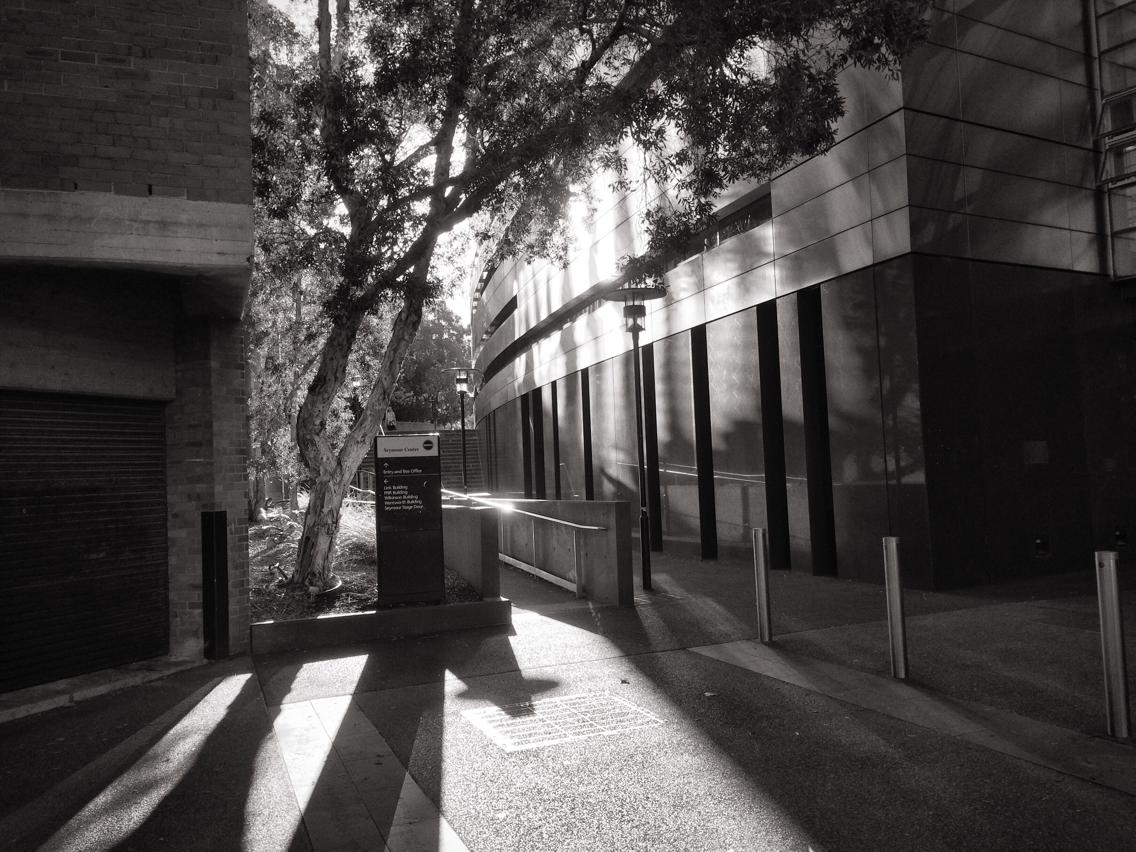 built structure, architecture, building exterior, shadow, tree, sunlight, empty, the way forward, footpath, street, sidewalk, city, day, walkway, building, wall - building feature, absence, bench, growth, outdoors
