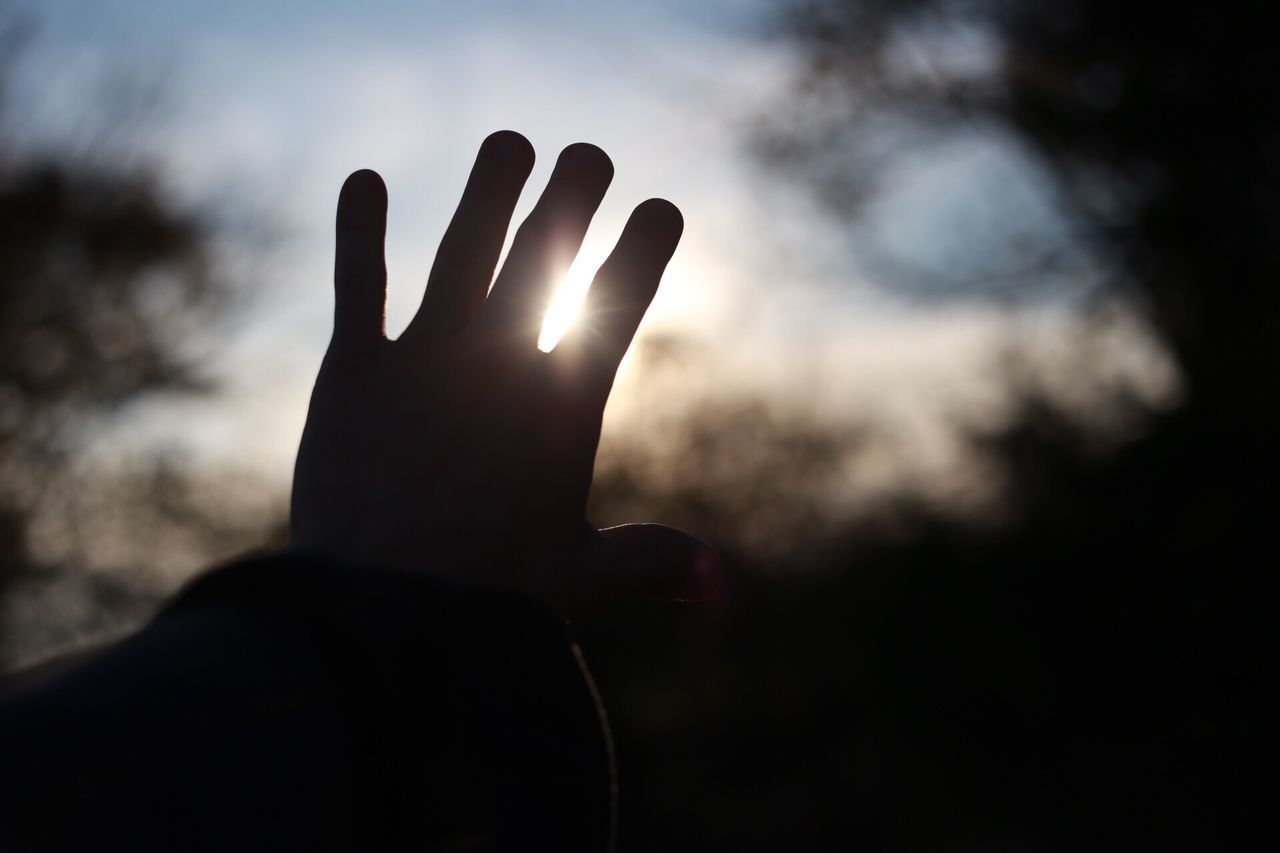 Human Hand Human Body Part Human Finger Real People Focus On Foreground Unrecognizable Person One Person Showing Silhouette Lifestyles Sunlight Sky Day Outdoors Close-up Solar Eclipse My Unique Style My Year My View My Point Of View Glow