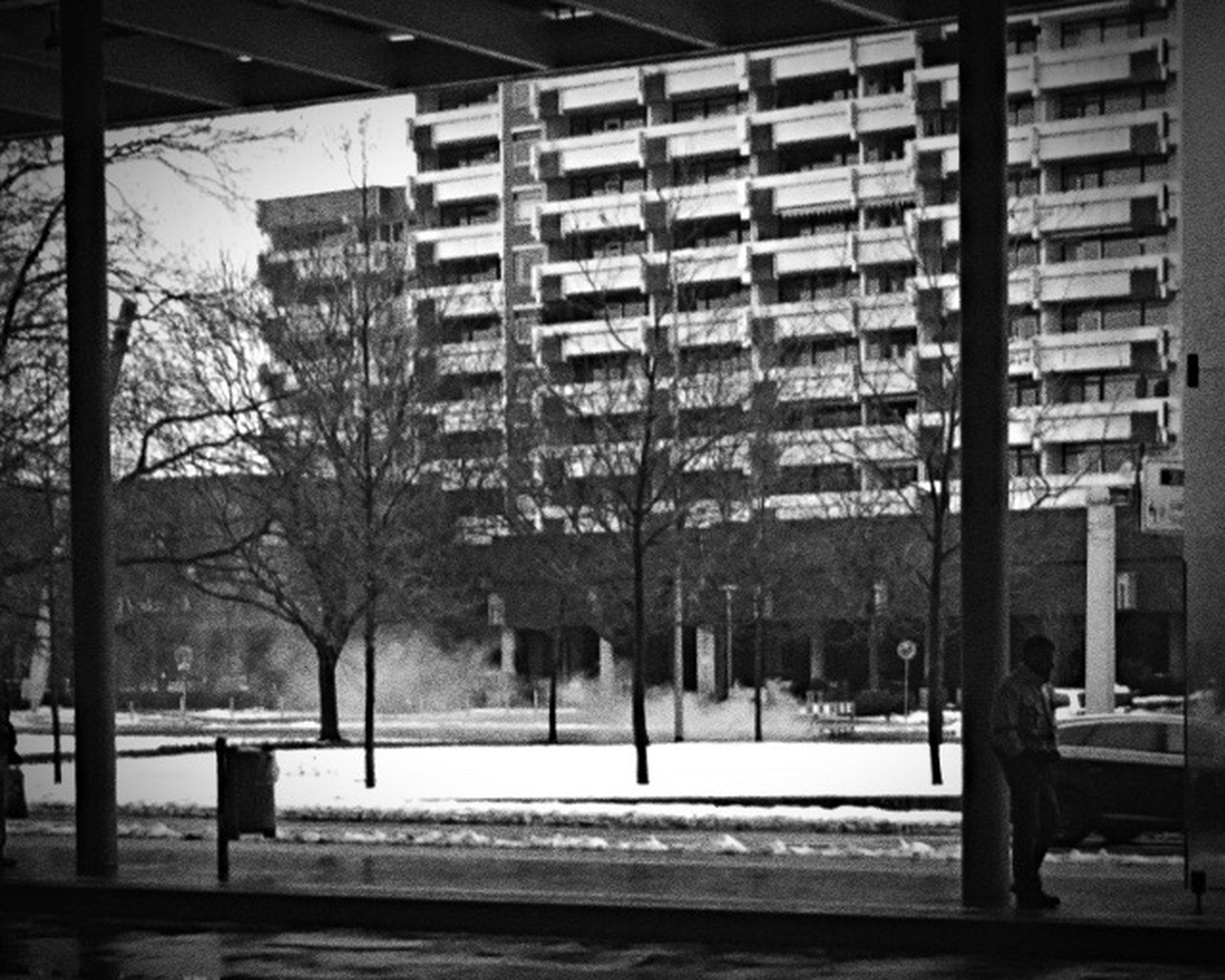 architecture, built structure, building exterior, city, building, street, tree, window, road, day, residential building, outdoors, residential structure, no people, street light, city life, empty, sunlight, incidental people, bare tree