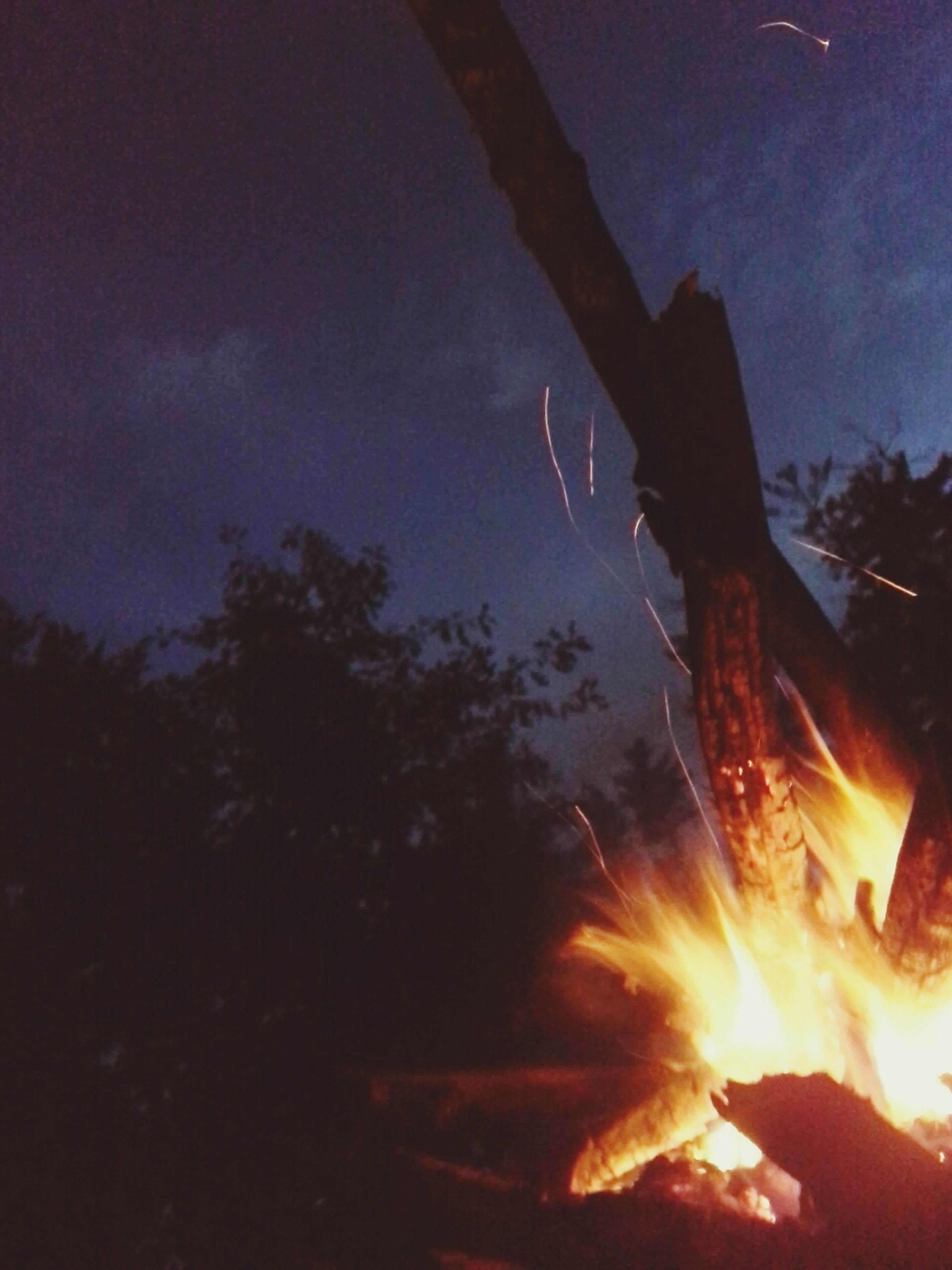 fire - natural phenomenon, burning, flame, night, heat - temperature, bonfire, glowing, illuminated, fire, sky, silhouette, campfire, smoke - physical structure, orange color, low angle view, dark, tree, outdoors, heat, motion