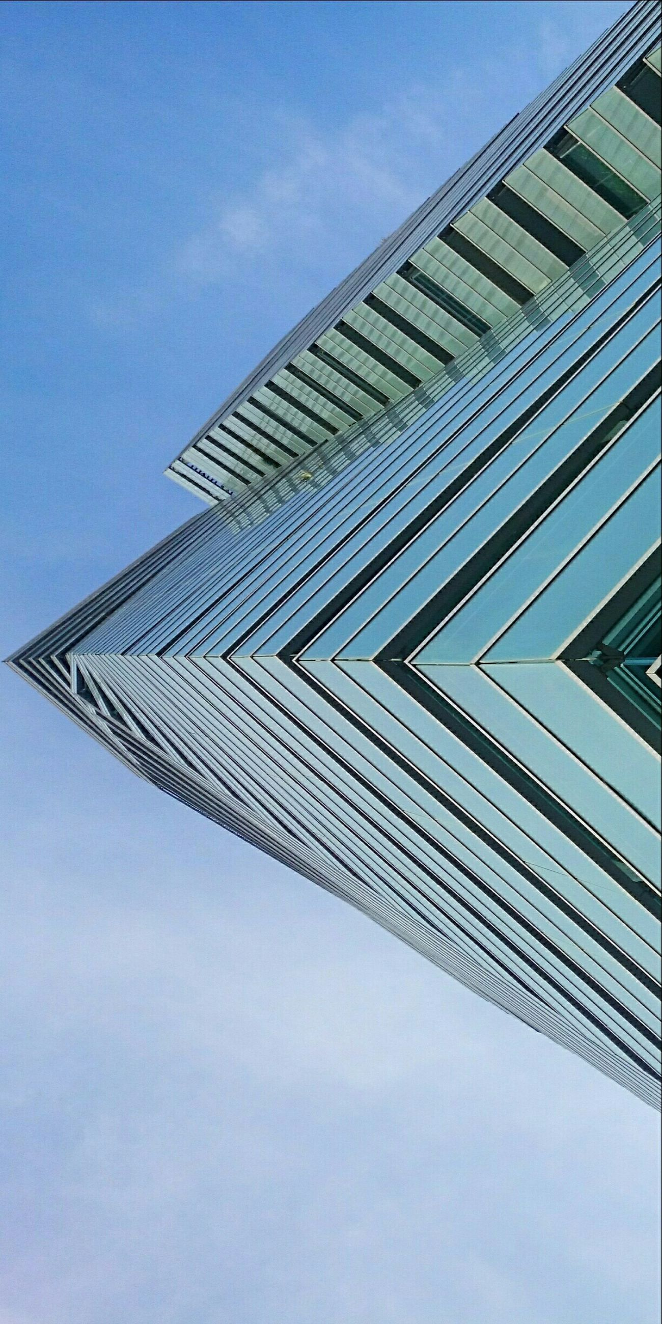 The EyeEm Facebook Cover Challenge EyeEm Architecture Lookingup