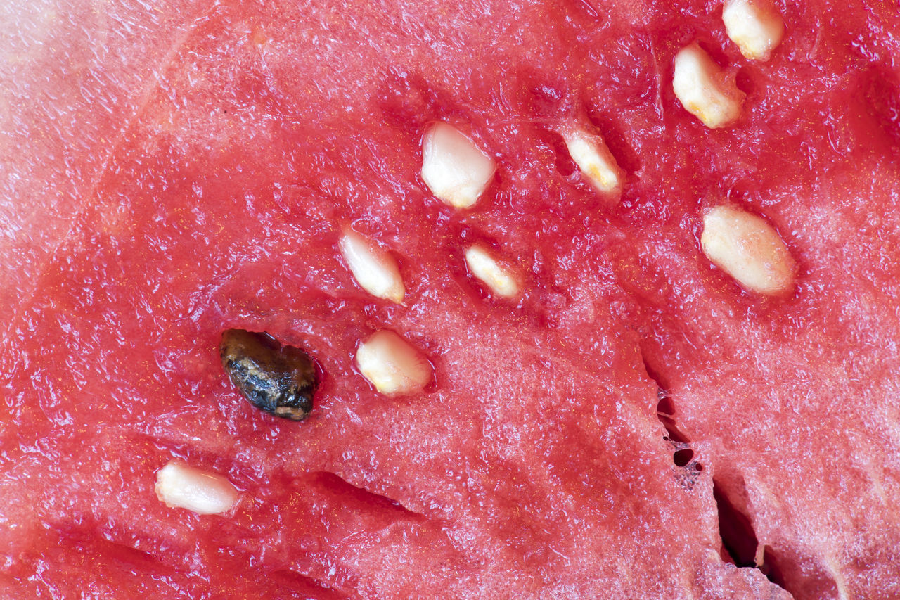 Watermelon close up: Watery melon with seeds on top. With summer arriving, watermelon is a delicious fruit to eat. Close-up Detail Food Fresh Fruit Freshness Fruit Fruits Full Frame Healthy Eating Indulgence Macro Melon Seeds No People Ready-to-eat Red Red Selective Focus Still Life Watermelon
