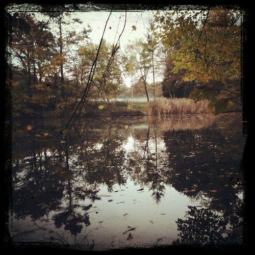 Lake Water Reflection Misty EyeEm Best Shots