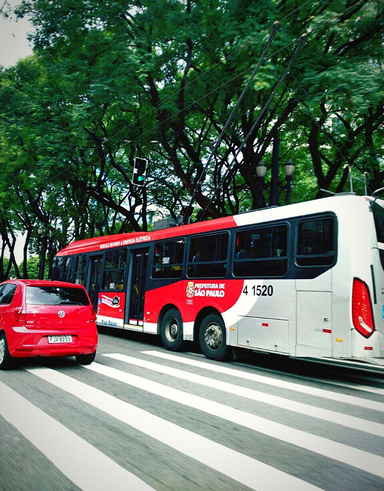 Urbanphotography Urban Life Stripes Listras Saopaulocity Sampa Sao Paulo - Brazil Adayinthelife Daybyday 🌲🏫🚶 Street Veichle Red TreesInTheCity Citylife
