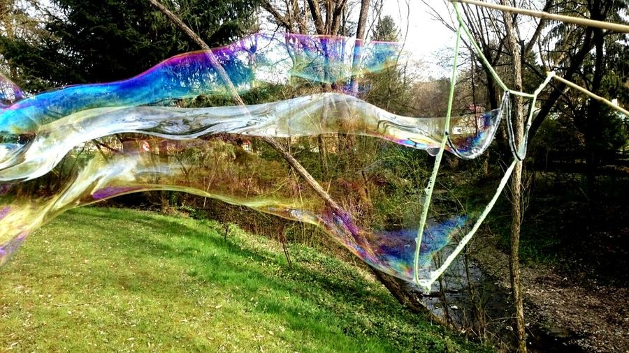 Grass Multi Colored No People Outdoors Eyem Nature Lover Nature Beauty In Nature Fragility Eyem Masterclass Soap Bubble Blowing Shadows And Silhouettes Soap Bubbles 💖 Soap Bubbles Soapbubblephotographie Reflection