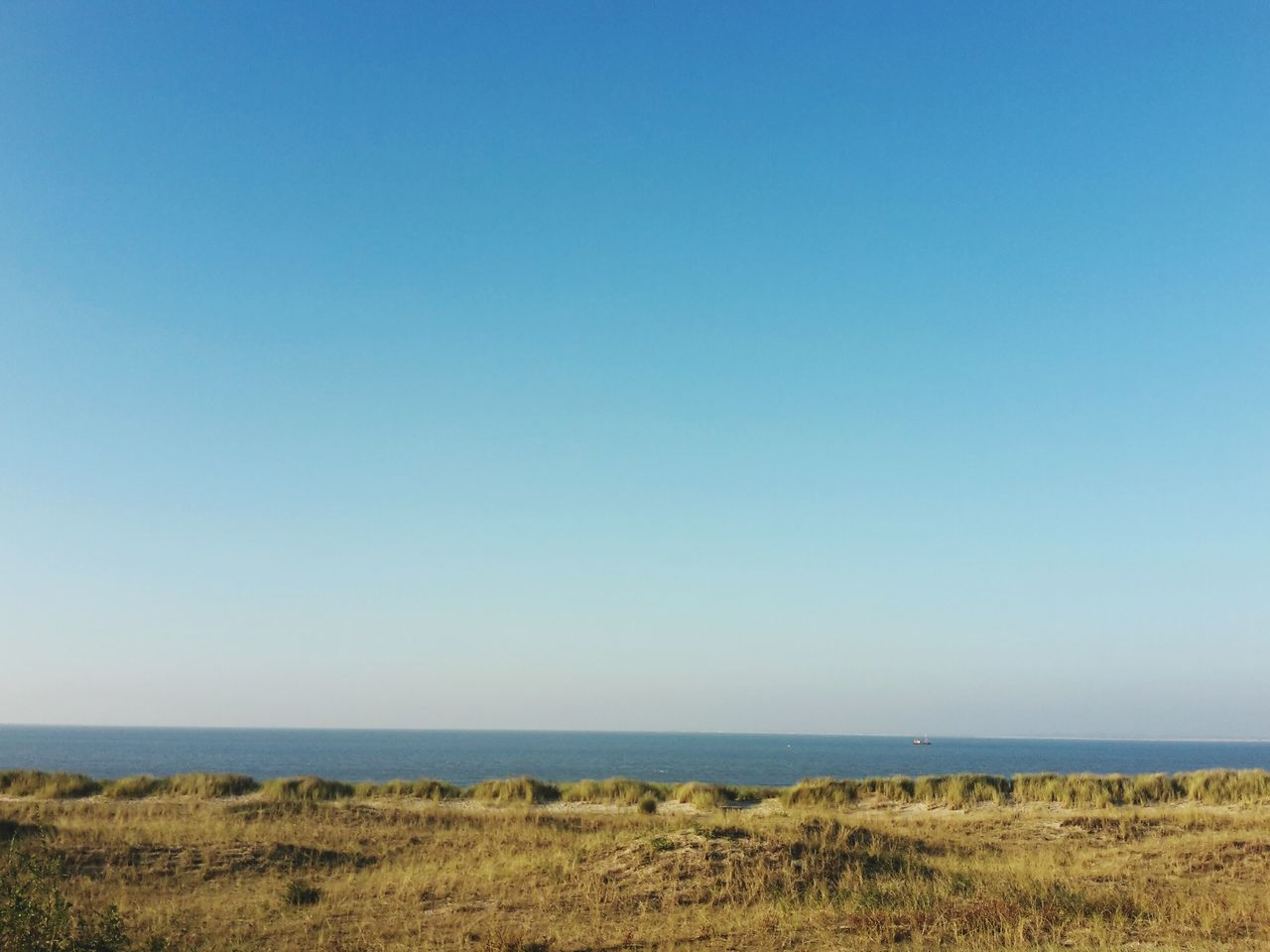 sea, horizon over water, nature, blue, scenics, beach, clear sky, outdoors, water, tranquil scene, day, sky, grass, beauty in nature, no people, landscape, tranquility, marram grass