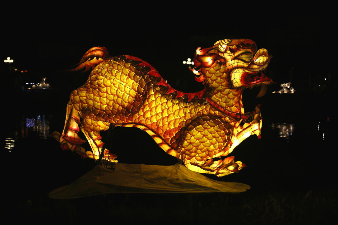 Chinese Dragon lantern in Hoi An Vietnam at night ASIA Asian Culture Chinese Chinese New Year Dark Destination Dragon Festival Hoi An Illuminated Lantern Mid Autumn Festival Night People Tourist Destination Tradition Traditional Traditional Culture Travel Vietnam Voyage