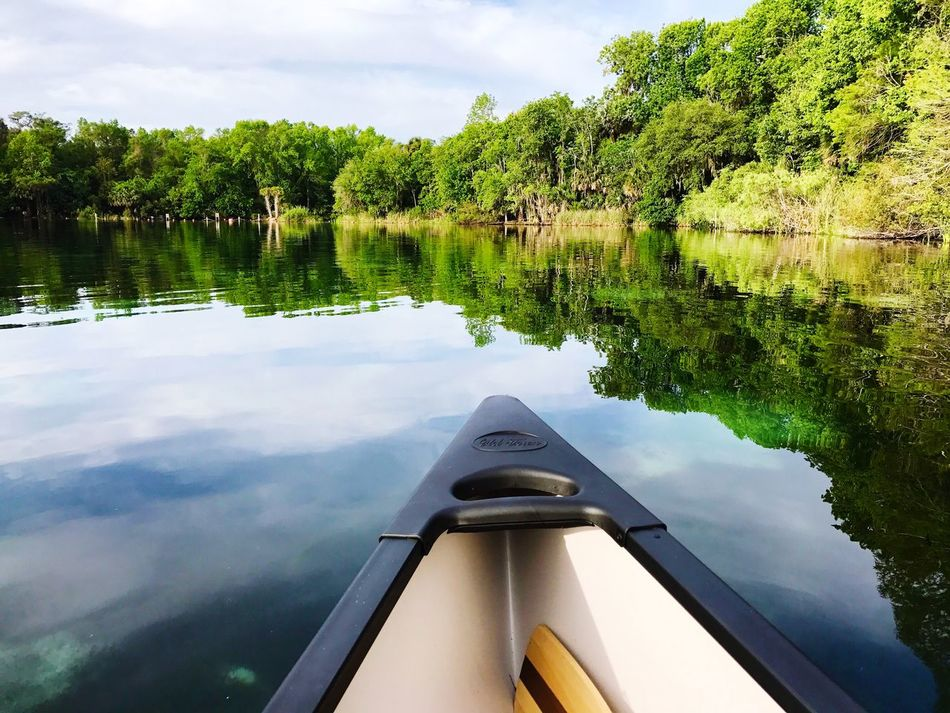 Canoe Canoeing Saltsprings Peaceful Calm Water Calm Reflections In The Water Reflection Water Nature Tree Lake Day Nautical Vessel No People Transportation Sky Outdoors Beauty In Nature
