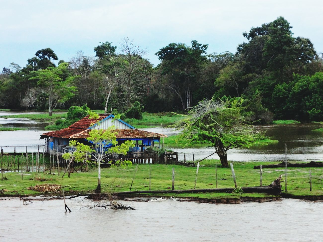 Melancholic Landscapes Rioamazonas Amazonriver Amazonia Brazil